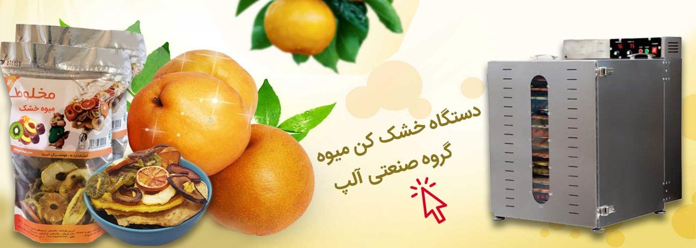 میوه خشک کن